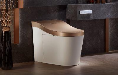 INNATE Intelligent Toilet