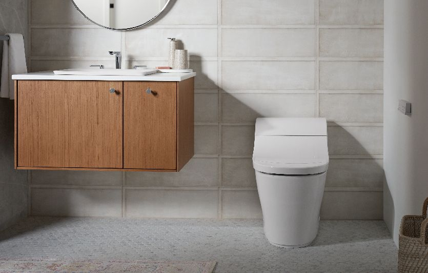 Searching for the best intelligent toilet experiences