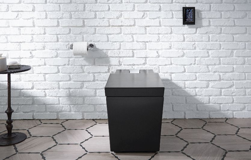 Shaping the intelligent toilet industry