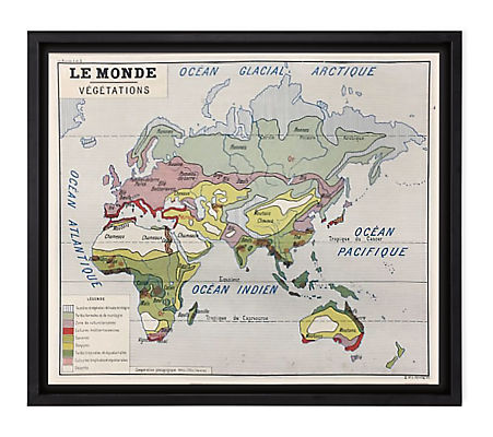 Vintage French School Map - Le Monde Vegetations