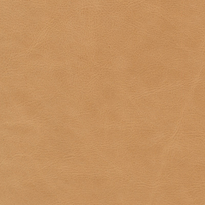 annata camel leather swatch