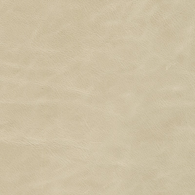 annata parchment leather swatch