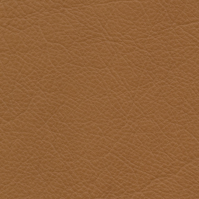 lecco camel leather swatch