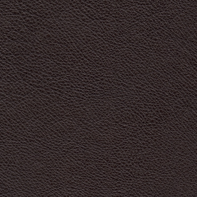 lecco chocolate leather swatch