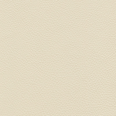 urbino ivory leather swatch