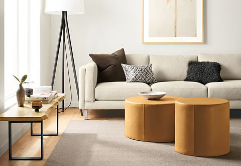 A room with a sofa, coffee table, ottoman, bench, floor lamp and area rug delivered for one flat rate