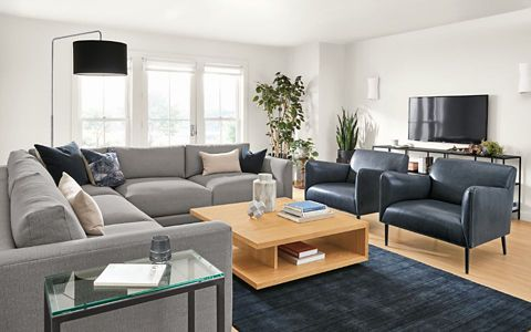 Shop this room with the Clemens Sectional