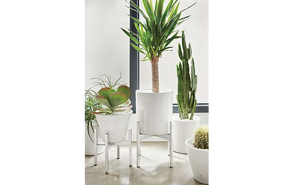 Era Ceramic Planters with Stands