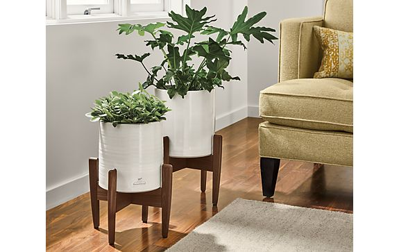 Era Round Planters with Wood Stand