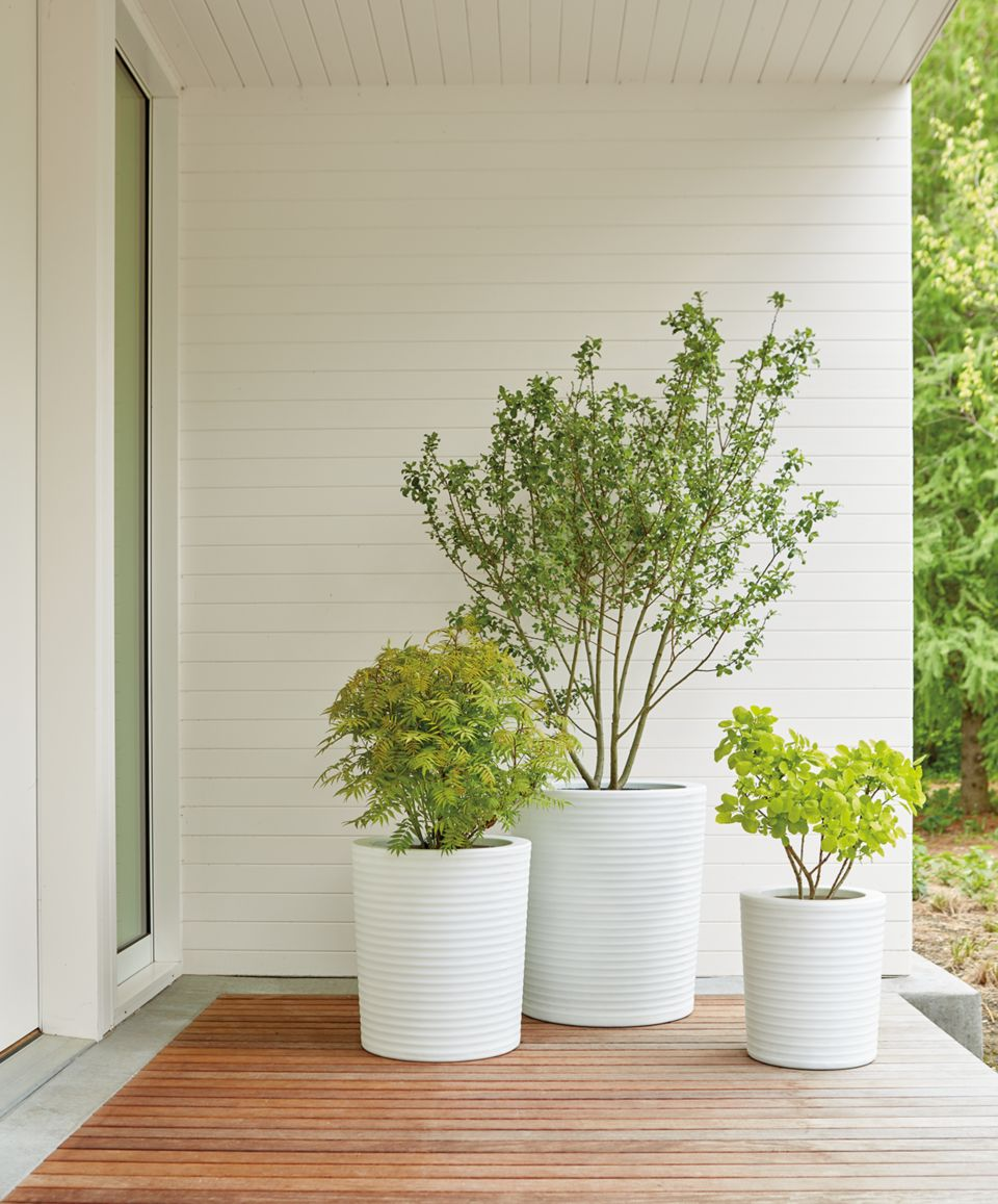 Detail of three white Furrow planters