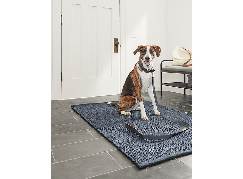 Entryway with Miles leather leash in navy