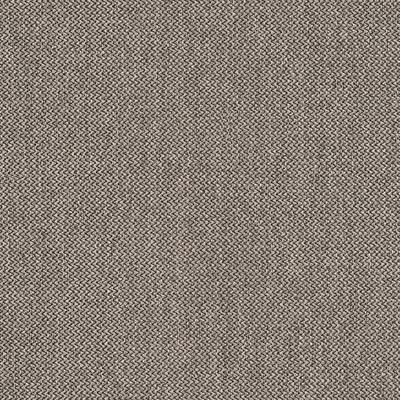 Dawson charcoal