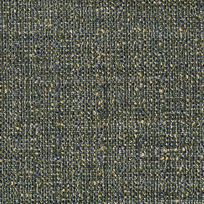 Tamm lichen