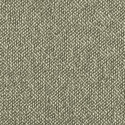 Tatum lichen