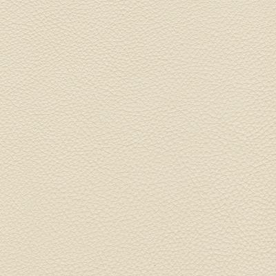 Urbino ivory