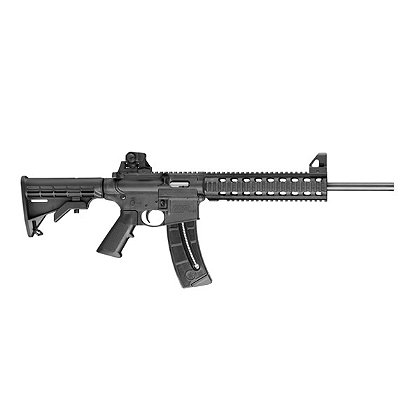Smith and Wesson Model 811030 M&P15-22, .22 LR