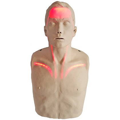 Aero Healthcare Brayden CPR Manikin with Blood Flow Circulation Indicator Lights