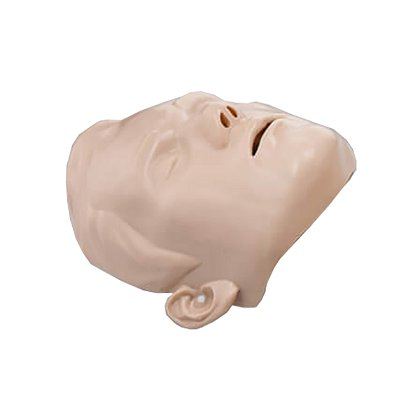 Aero Healthcare Brayden Manikin Face Skin