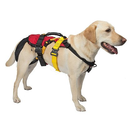CMC K9 Lifesaver Harness™