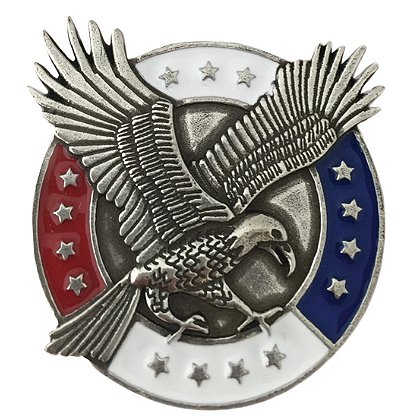 Danforth Pewter Freedom Magnet