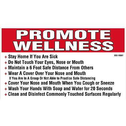 Exclusive Promote Wellness Decal