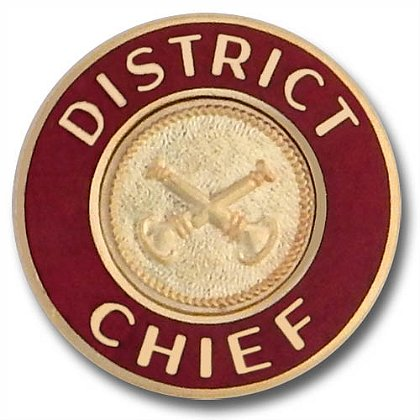 District Chief Collar Insignia Pin