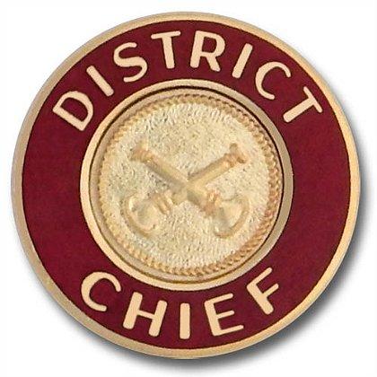 District Chief Collar Insignia Pin