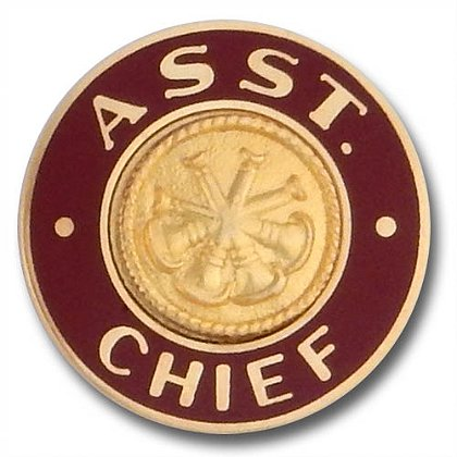 Gold Assistant Chief Collar Insignia Pin