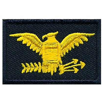 Hero's Pride Embroidered Eagle Colonel Patch