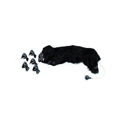 Simulaids Life/form® Basic Sanitary CPR Dog