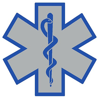 Silver Star Of Life Decal with Blue Border