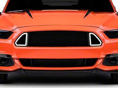 Mustang Grilles 2015-2019