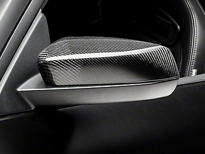 Carbon Fiber Parts<br />('10-'14 Mustang)