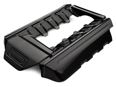 Mustang Plenum and Coil Covers 2015-2019